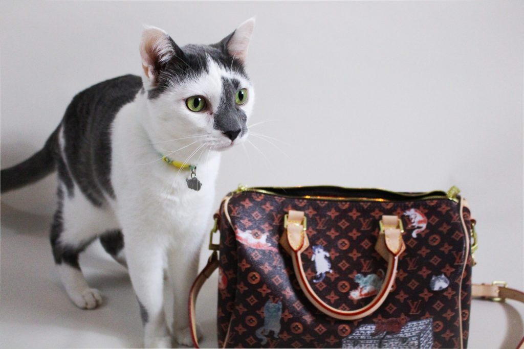 Whisker Fabulous' Farley Waddlesworth and his Catogram Speedy Bag