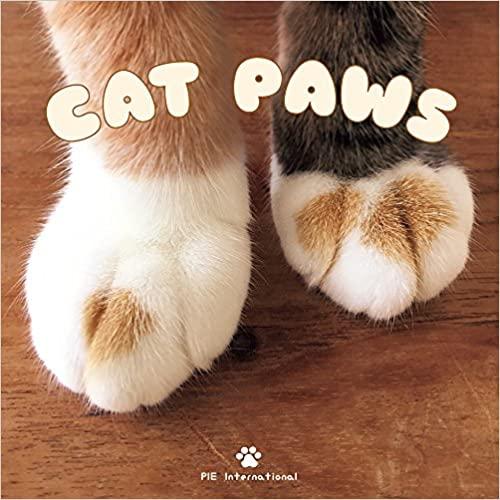 Best cat book to read